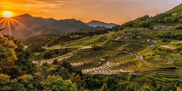 rýžové terasy a západ slunce