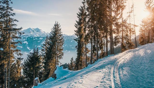 vyjetá stopa lyžařů